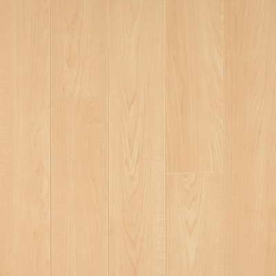 jual American Maple Armstrong L8712